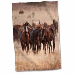 3D Rose Herd of Horses in Dry Grasses of New Mexico Hand Tow