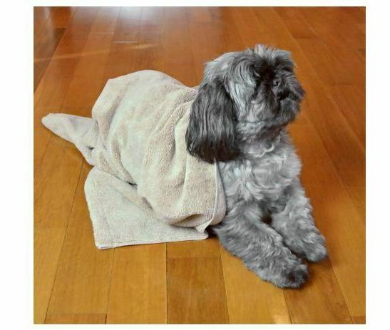 Bone Dry DII Dog With Embroidered SHIPPING!