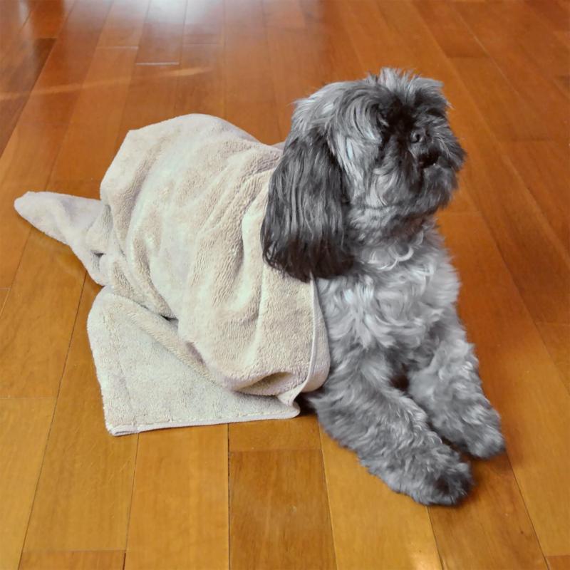 Dii Bone Pet Towel