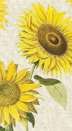 Caspari Under The Sun Guest Towel Napkins